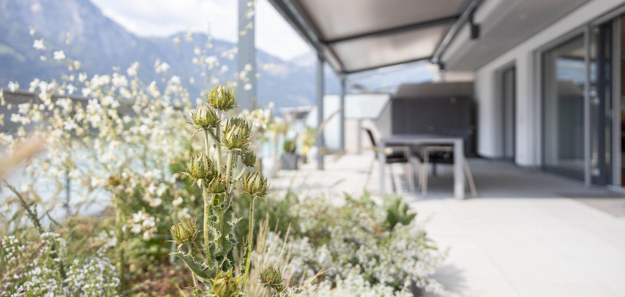naturnaher Dachgarten der Attikawohnung